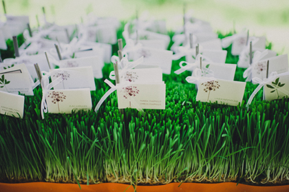 Wheatgrass wedding decor